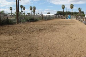 Photo #7: M & M Stables. Horse Boarding and Obstacle Course