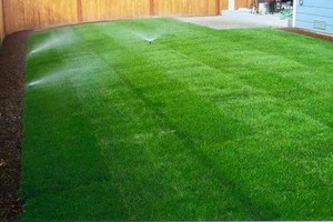 Photo #2: ARTIFICIAL TURF, REAL TURF, PAVERS, GRAVEL & MORE