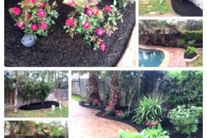 Photo #6: Tapia's lawn care - mulch installation