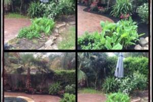 Photo #7: Tapia's lawn care - mulch installation