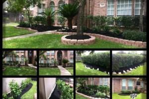 Photo #8: Tapia's lawn care - mulch installation