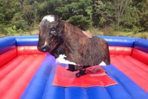 Photo #8: MECHANICAL BULL PARTY RENTAL TODAY!