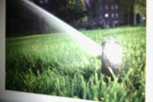 Photo #10: Sprinklers And Drainage Systems