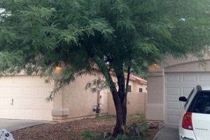 Photo #9: Landscaping and Yard Services. I offer great work for a great price!