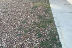 Photo #2: Landscaping and Yard Services. I offer great work for a great price!