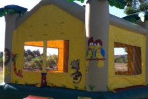 Photo #14: JUMPY HOUSES & PARTY RENTALS