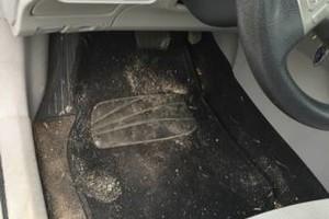Photo #6: Auto Hygiene Professional Detailing