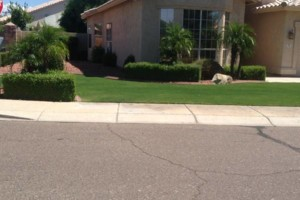 Photo #1: NATIVE LANDSCAPING ($60 a month for front and back yards!)