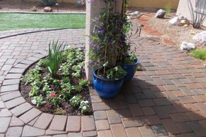 Photo #21: Professional Landscape Designs - Call Free Estimates! WINTER SPECIALS!