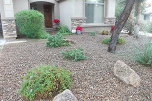 Photo #18: Professional Landscape Designs - Call Free Estimates! WINTER SPECIALS!