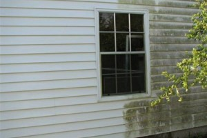 Photo #2: Pressure washing. $50 special 2 car driveway. Call today for your free estimate!...