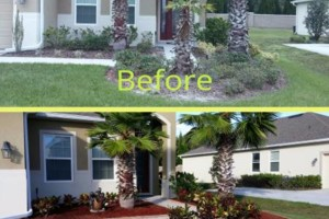 Photo #3: Landscaping & Lawn Care