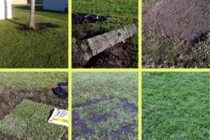 Photo #2: Landscaping & Lawn Care
