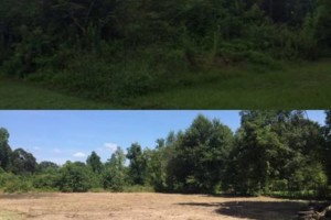 Photo #1: LAND CLEARING/ EXCAVATION/ GRAVEL ROADS/ DEMOLITION