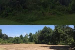 Photo #1: LAND CLEARING/ EXCAVATION/ GRAVEL ROADS/ DEMOLITION