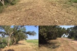 Photo #8: LAND CLEARING/ EXCAVATION/ GRAVEL ROADS/ DEMOLITION