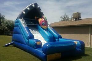 Photo #9: Backyard Bouncers Available