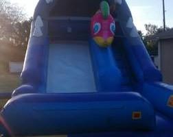 Photo #7: Backyard Bouncers Available