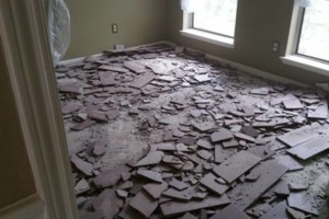 Photo #2: Floors Removal.