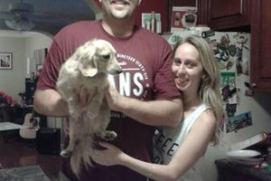 Photo #2: HAPPY PAWS!!! PET GROOMING & PET SITTING SERVICES