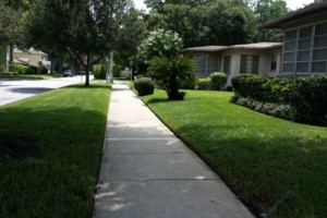 Photo #4: Rotary Blade Lawn Care Services Starts at $25.00
