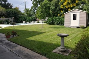 Photo #3: Rotary Blade Lawn Care Services Starts at $25.00