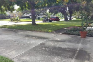Photo #2: Rotary Blade Lawn Care Services Starts at $25.00