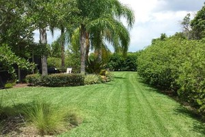 Photo #1: Lawn Services in Hunters Creek/ Kissimmee/Saint Cloud/Celebration