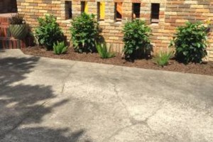 Photo #23: Frank's Landscaping & Irrigation