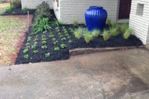 Photo #2: Frank's Landscaping & Irrigation