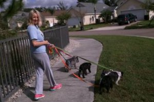 Photo #1: AFFORDABLE Pet Sitting + Hunters Creek and Kissimmee/Disney