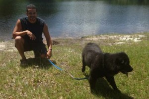 Photo #2: Roberto's Dogs Boarding & Pet Sitting
