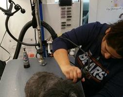 Photo #4: A day at the spa for your fur babies. Mobile dog Groomer