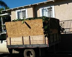Photo #1: Hauling / yard cleanup /tree's service