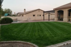 Photo #1: BRANDOS LANDSCAPING AND MAITENANCE