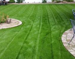 Photo #4: BRANDOS LANDSCAPING AND MAITENANCE