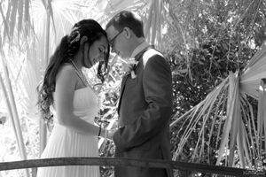Photo #15: Wedding/Event Photographer