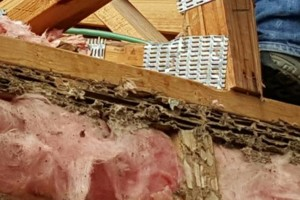 Photo #1: Termites!!! Call H&R For Free Termite Inspection!!