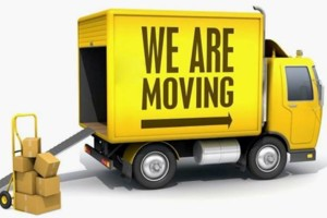 Photo #1: City movers & labor $65 an hour