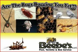 Photo #1: New Client Special $25 for Pest Control , Beebe's Pest Control
