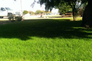 Photo #1: QUALITY AFFORDABLE LANDSCAPING