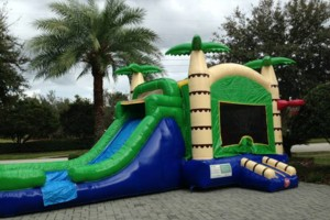Photo #9: Bounce Houses for Rent (Lake Mary, Sanford)
