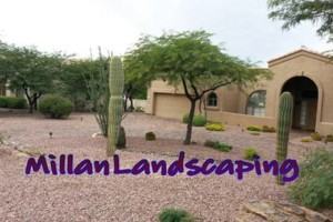 Photo #10: Milla's Landscaping & Maintenance Service
