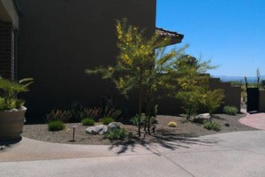 Photo #12: ANE Landscaping