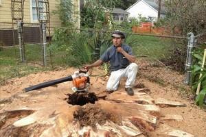 Photo #1: Houston Favian's TREE REMOVAL