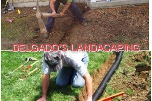 Photo #1: DELGADO'S LANDSCAPING