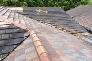 Photo #14: Miami's Pressure Washing Services - roof cleaning as low as $145