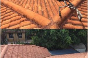 Photo #12: Miami's Pressure Washing Services - roof cleaning as low as $145