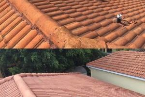 Photo #10: Miami's Pressure Washing Services - roof cleaning as low as $145