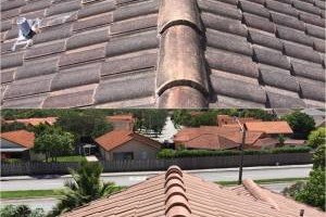 Photo #2: Miami's Pressure Washing Services - roof cleaning as low as $145